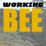 Mangawhai Activity Zone WORKING BEE